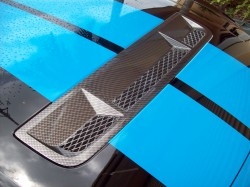 Fits 2010-14 Shelby GT500 Hood Vent Insert Hydro Carbon Fiber With Part Included